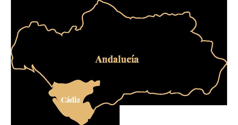 Andalucía - Cádiz | Bodega Barbadillo