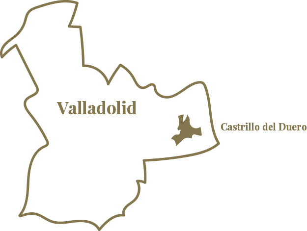 Mapa Región & Vinos | Bodegas Vega Real