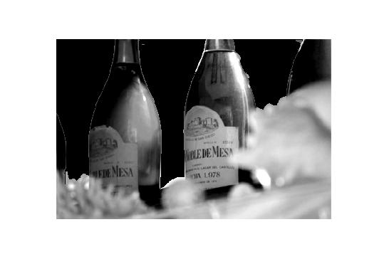1975 - El mar se hizo vino | Bodegas Barbadillo