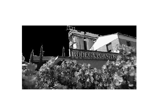 1993 - Y se unió la montaña| Bodegas Barbadillo