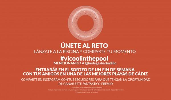 Barbadillo VI Cool #VIcoolinthepool   Barbadillo