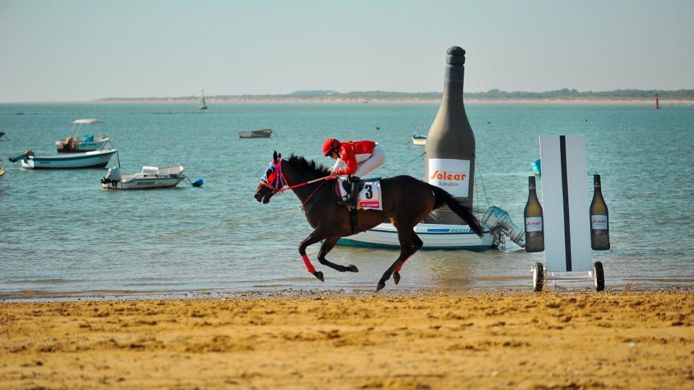 Barbadillo y las Carreras de Caballos en las playas de Sanlúcar, una apuesta segura